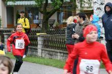 fitnesslauf_2013_20130527_1637418922